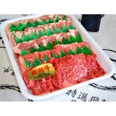 やまちゃん飛騨牛焼肉セット 計約1kg(オリジナルタレ付き)