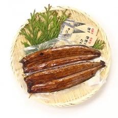 【浜名湖産】 鰻蒲焼2本3セット