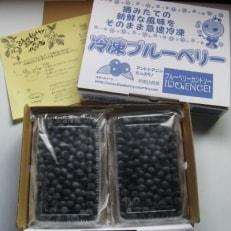【産地直送】冷凍ブルーベリー 1kg