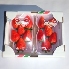 上野イチゴ農園のいちご「スカイベリー」315g×2パック