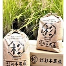 【2019年産】キヌヒカリ 玄米10kg(5kg×2袋)