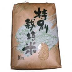 【平成30年産】特別栽培米・九州のこだわり「にこまる」 玄米10kg