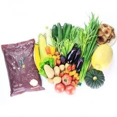 【平成30年度産】能登米コシヒカリ3kgと直売所に並ぶ季節の野菜の詰合せ
