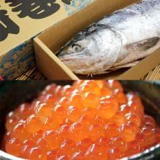 【北海道産】新巻鮭(2kg前後)といくら醤油漬けセット(150g)