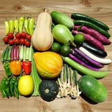 南国高知より まごころ野菜セット【よりどり】