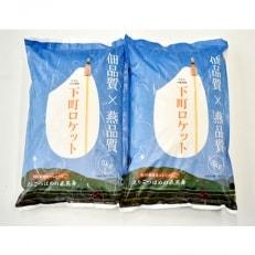 【平成30年産米】えちごつばめの飛燕舞10kg(白米5kg×2袋)【下町ロケット袋】