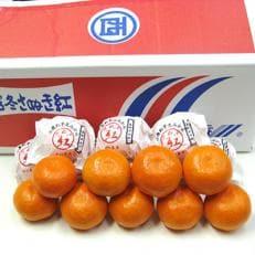 高松産季節の果物【越冬完熟小原紅早生みかん】約2.7kg