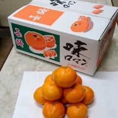 【諫早青果】長崎みかん 味ロマン5kg