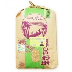 【平成30年産】潮来産 コシヒカリ 玄米10kg(1袋)
