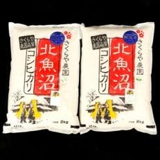 北魚沼コシヒカリ【無洗米】2kg×2袋【贈答用にもどうぞ】