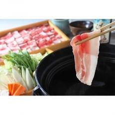 指宿産 六白黒豚のしゃぶしゃぶ肉(バラ500g,モモ500g)