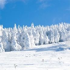猪苗代町全スキー場共通シーズン券(小・中学生用) 1名様分