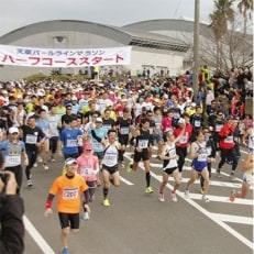 ベストアメニティ第47回天草パールラインマラソン大会参加券(2019.3.10開催・1名分)