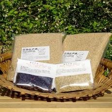 完全自然米(玄米)5kg+古代米セット