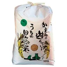 【平成30年産】農薬、化学肥料を極限まで減らした、ひなた村のお米 夢しずく玄米10kg