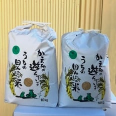 【平成30年産】農薬、化学肥料を極限まで減らした、ひなた村のお米 さがびより玄米10kg×2袋