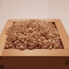 【平成30年産】 大和米 奈良県広陵町産ヒノヒカリ 玄米10kg
