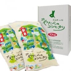 平成30年産特別栽培米 つくば市産コシヒカリ(精米5kg/2袋)