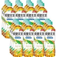 爽健美茶(600mlPET×24本) H004