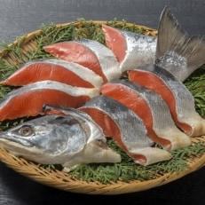 甘塩紅鮭切り身姿造り1尾