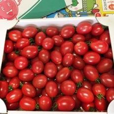 【熊谷農園】小石原トマト1.6kg