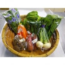 大山町産野菜セット(小)
