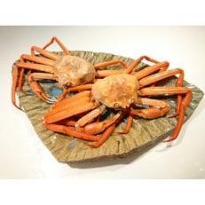 【おすすめ】新湊産紅ズワイガニ約1kg(小サイズ2~3尾)