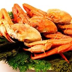 【国産】紅ずわい姿蟹3尾セット B815