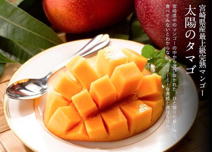 宮崎県太陽のマンゴー