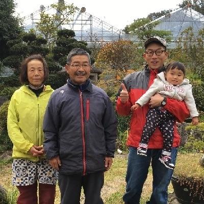 温室栽培さくらんぼ(佐藤錦)1kg 特秀品 0044-201