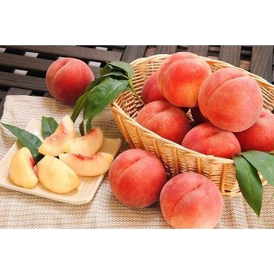 山形の白桃 <やわらかい桃> 3kg 品種おまかせ (8~14玉) 秀品 010-B39