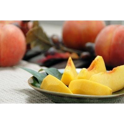 山形の黄桃 3kg 「秀品」 品種おまかせ 8~14玉 010-B41