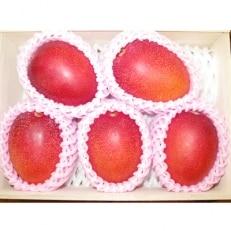 マンゴーの森 しあわせ完熟マンゴー 桐箱3玉~6玉入り