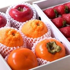 【老舗果物専門店特選】フルーツソムリエが選んだ『季節の果物詰め合わせ』旬をお届け バイヤーいちおし