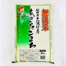 大潟村 カントリーエレベーター公社 あきたこまち無洗米精米5kg+特別栽培・無洗米精米5kg