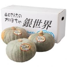 山口さんのかぼちゃ 銀世界