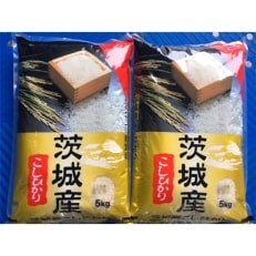 お米の代表品種コシヒカリ10kg【茨城県産コシヒカリ】