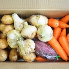 春の新野菜セット(新じゃがいも、新玉ねぎ、春人参)に旬の地元野菜を1品加えてお届け。【約5kg】