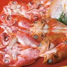 富岡の高級白身魚干物セット