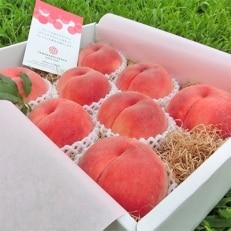 農園直送 樹上完熟桃「ジュエリーピーチ(R)」2.1kg