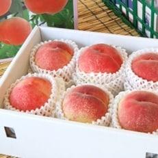 【先行受付】山梨の桃 5~7玉(約1.8kg)