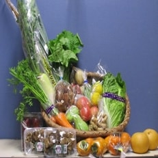 季節の野菜詰め合わせ(約7kg)