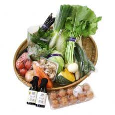 【鬼北町産】新鮮野菜と卵10個・卵かけ醤油2本セット