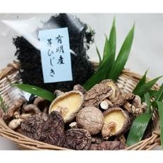 熊本県産干し椎茸160g×1袋・有明産芽ひじき100g×1袋セット