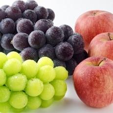【秋の味覚セット】人気のブドウ2種&旬のリンゴの詰め合わせ【信州グルメ市場】