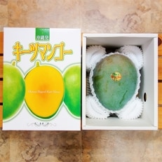 農家から直接お届け!太陽ファームのキーツマンゴー 1kg(1玉)
