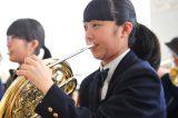 楽器寄附ふるさと納税