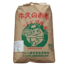 【平成30年度産】特別栽培米 うしく河童米10kg