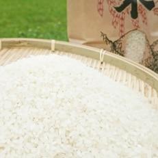 【京丹後市産】平成30年産 特別栽培米コシヒカリ10kg