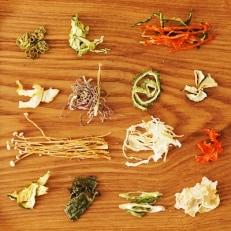 無添加 土佐の畑の乾燥野菜 詰め合わせ ドライベジタブル
